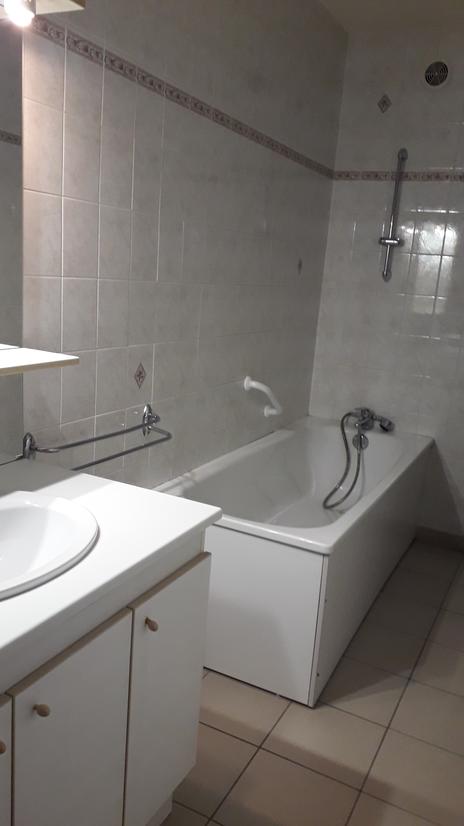 mésange salle de bain
